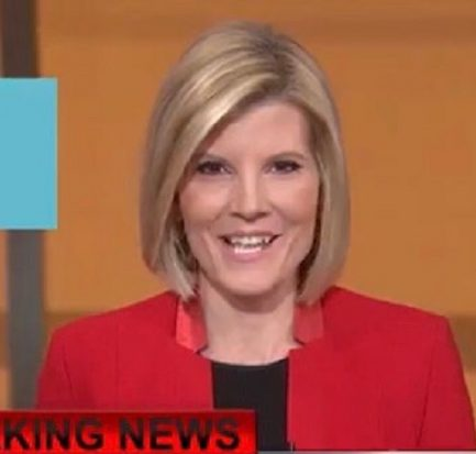 Kate Snow | Biography, Wiki, Age, Net Worth (2020), Marriage, Husband, Instagram, Journalist |
