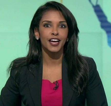 Meet the American Broadcast Journalist, Richelle Carey: Bio, Wiki, Net Worth, Career