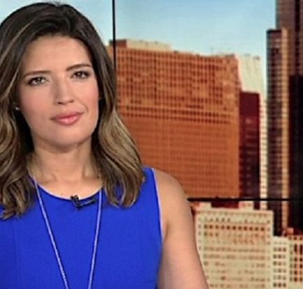 How old is Tanja Babich? Bio, Wiki, Career, Net Worth, Baby, ABC 7 Chicago