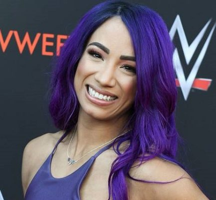 Meet WWE Superstar, Sasha Banks: Bio, Age, Wiki, Career, Net Worth, Husband, Instagram, Twitter