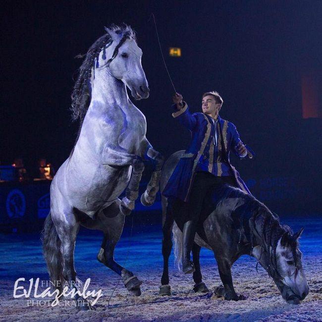Ben Atkinson Horses